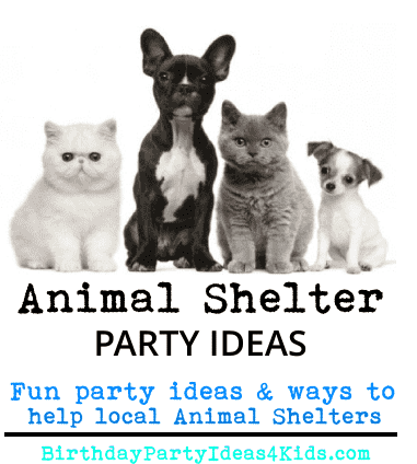 animal shelter party ideas for charity birthday