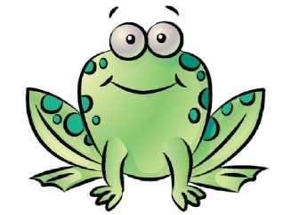 Green frog drawing with a friendly face
